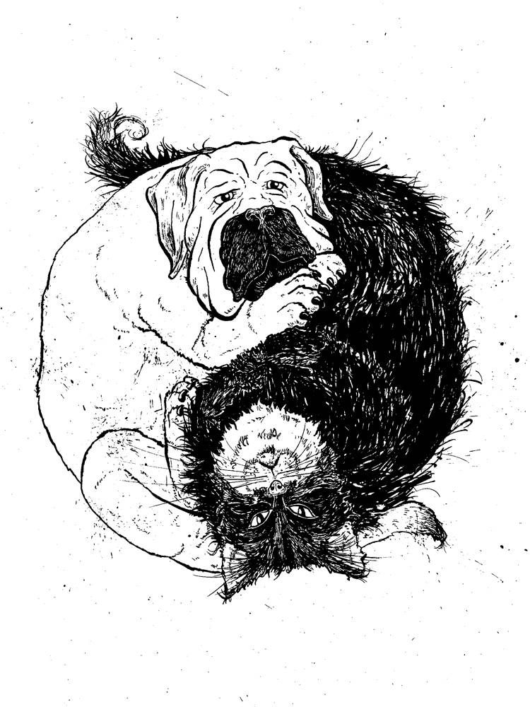Yin Yang symbol made of a dog and cat