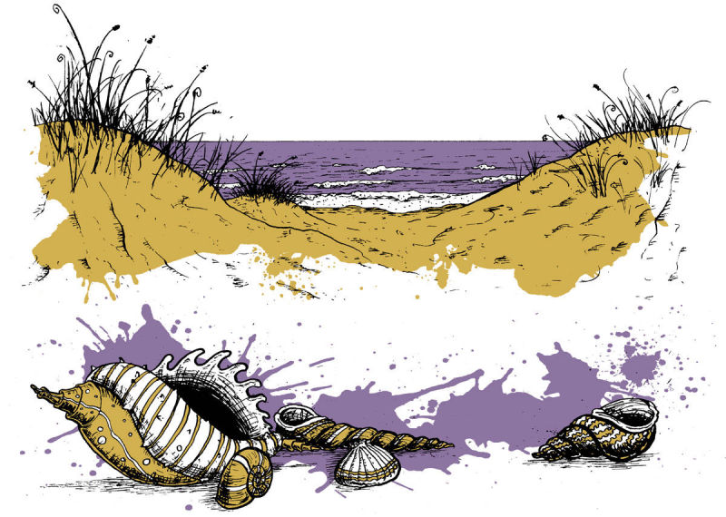 Sand dunes and shells spot illustrations