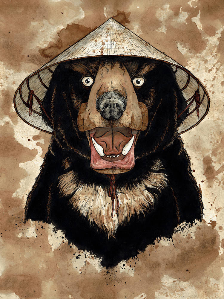Sun Bear wearing a traditional Vietnamese conical hat